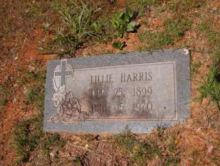 HARRIS, LILLIE - Columbia County, Arkansas | LILLIE HARRIS - Arkansas Gravestone Photos