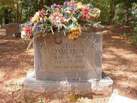 JAMERSON, DELIA - Columbia County, Arkansas | DELIA JAMERSON - Arkansas Gravestone Photos