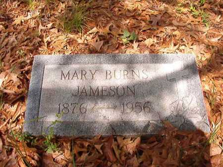 BURNS JAMESON, MARY - Columbia County, Arkansas | MARY BURNS JAMESON - Arkansas Gravestone Photos