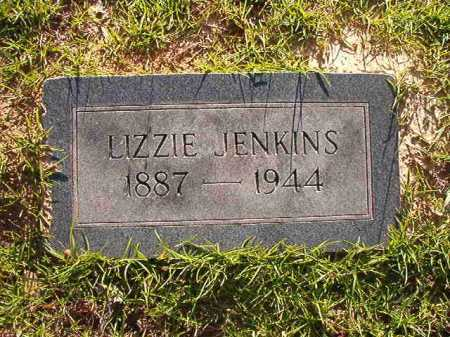 JENKINS, LIZZIE - Columbia County, Arkansas | LIZZIE JENKINS - Arkansas Gravestone Photos