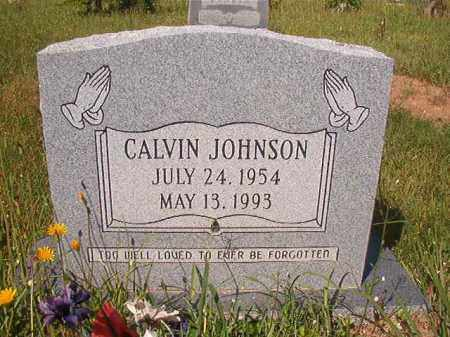JOHNSON, CALVIN - Columbia County, Arkansas | CALVIN JOHNSON - Arkansas Gravestone Photos
