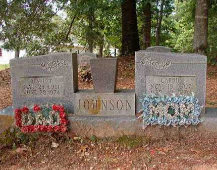JOHNSON, CARRIE - Columbia County, Arkansas | CARRIE JOHNSON - Arkansas Gravestone Photos