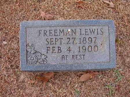 LEWIS, FREEMAN - Columbia County, Arkansas | FREEMAN LEWIS - Arkansas Gravestone Photos