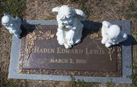 LEWIS, HADEN EDWARD - Columbia County, Arkansas | HADEN EDWARD LEWIS - Arkansas Gravestone Photos