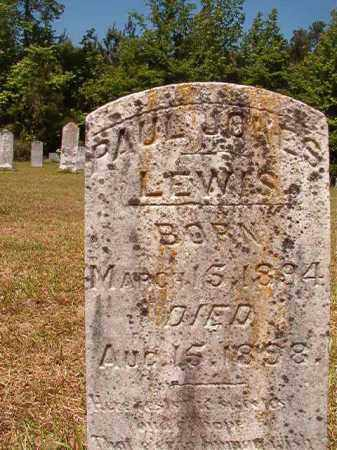 LEWIS, PAUL JONES - Columbia County, Arkansas | PAUL JONES LEWIS - Arkansas Gravestone Photos