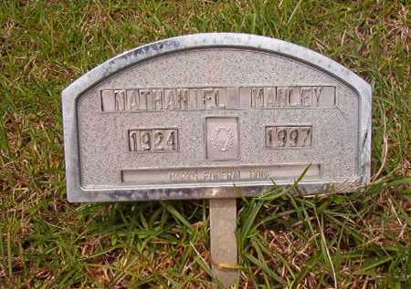 MANLEY, NATHANIEL - Columbia County, Arkansas | NATHANIEL MANLEY - Arkansas Gravestone Photos