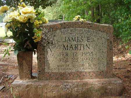 MARTIN, JAMES E - Columbia County, Arkansas | JAMES E MARTIN - Arkansas Gravestone Photos