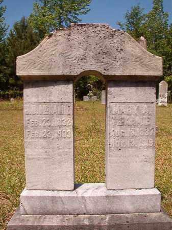 MCKAMIE, J D - Columbia County, Arkansas | J D MCKAMIE - Arkansas Gravestone Photos
