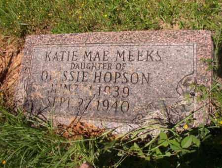 MEEKS, KATIE MAE - Columbia County, Arkansas | KATIE MAE MEEKS - Arkansas Gravestone Photos
