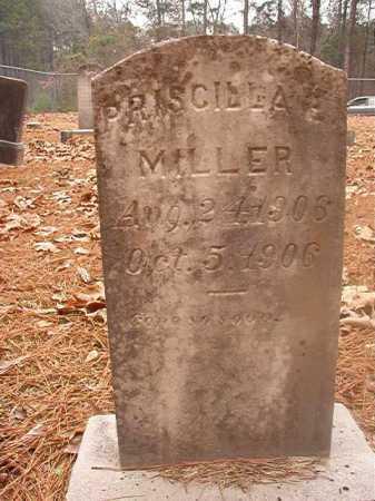 MILLER, PRISCILLA E - Columbia County, Arkansas | PRISCILLA E MILLER - Arkansas Gravestone Photos