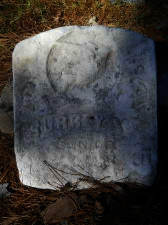 MITCHELL (OBIT), SURREY B - Columbia County, Arkansas | SURREY B MITCHELL (OBIT) - Arkansas Gravestone Photos