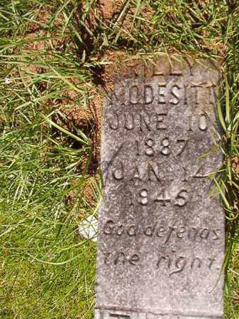 MODESITT, RILLY - Columbia County, Arkansas | RILLY MODESITT - Arkansas Gravestone Photos