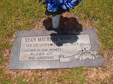 MORGAN, SEAN MICHAEL - Columbia County, Arkansas | SEAN MICHAEL MORGAN - Arkansas Gravestone Photos