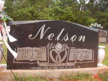 POWELL NELSON, SYGUAL - Columbia County, Arkansas | SYGUAL POWELL NELSON - Arkansas Gravestone Photos