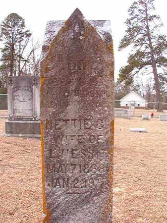 NESBIT, NETTIE C - Columbia County, Arkansas | NETTIE C NESBIT - Arkansas Gravestone Photos