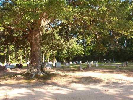*NEW HOPE, CEMETERY - Columbia County, Arkansas   CEMETERY *NEW HOPE - Arkansas Gravestone Photos