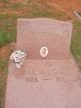 NEWSOM, DESTEEN A - Columbia County, Arkansas | DESTEEN A NEWSOM - Arkansas Gravestone Photos