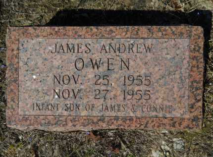 OWEN, JAMES ANDREW - Columbia County, Arkansas | JAMES ANDREW OWEN - Arkansas Gravestone Photos