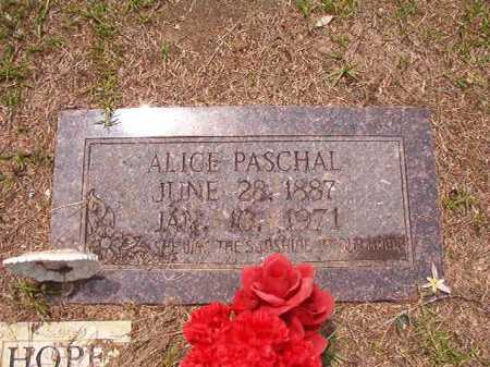 PASCHAL, ALICE - Columbia County, Arkansas | ALICE PASCHAL - Arkansas Gravestone Photos