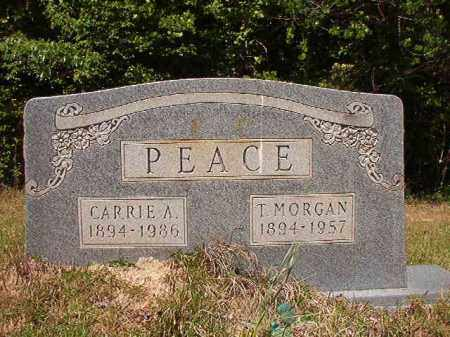 PEACE, T MORGAN - Columbia County, Arkansas | T MORGAN PEACE - Arkansas Gravestone Photos