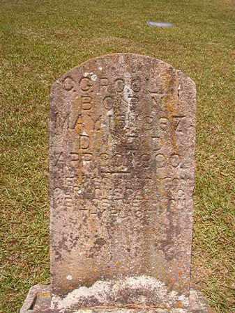 POOLE, C G - Columbia County, Arkansas | C G POOLE - Arkansas Gravestone Photos