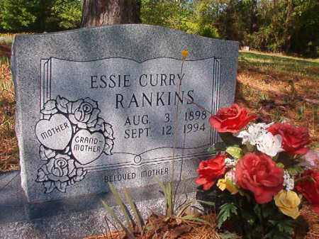 RANKINS, ESSIE - Columbia County, Arkansas | ESSIE RANKINS - Arkansas Gravestone Photos