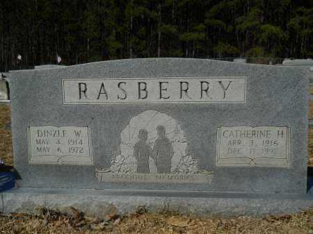 RASBERRY, DINZLE W - Columbia County, Arkansas | DINZLE W RASBERRY - Arkansas Gravestone Photos