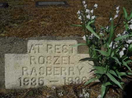 RASBERRY, ROSZEL - Columbia County, Arkansas | ROSZEL RASBERRY - Arkansas Gravestone Photos