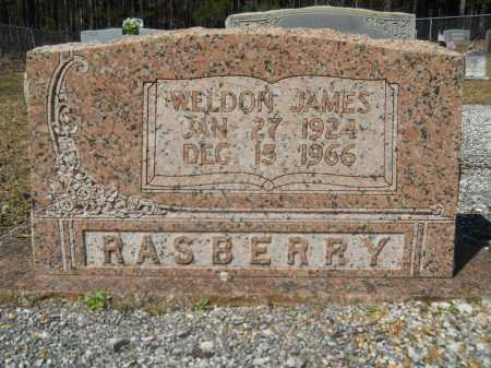 RASBERRY, WELDON JAMES - Columbia County, Arkansas | WELDON JAMES RASBERRY - Arkansas Gravestone Photos