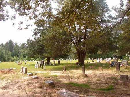 *SAINT MATTHEW, CEMETERY - Columbia County, Arkansas | CEMETERY *SAINT MATTHEW - Arkansas Gravestone Photos