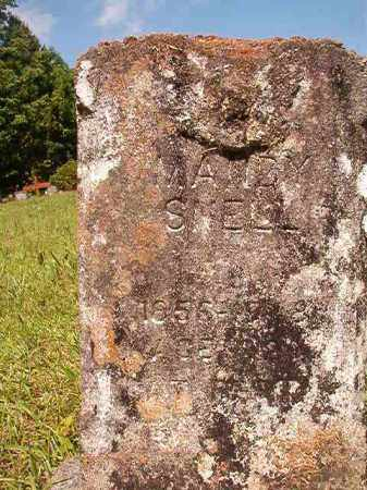 SNELL, MANDY - Columbia County, Arkansas | MANDY SNELL - Arkansas Gravestone Photos