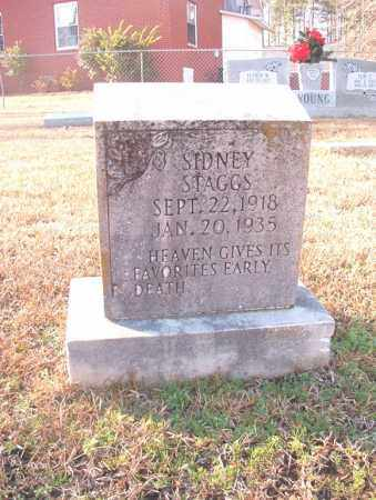STAGGS, SIDNEY - Columbia County, Arkansas | SIDNEY STAGGS - Arkansas Gravestone Photos
