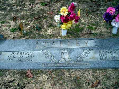 TALLEY, CATHERINE - Columbia County, Arkansas | CATHERINE TALLEY - Arkansas Gravestone Photos