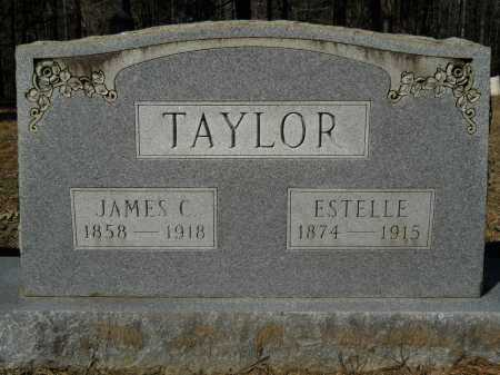 TAYLOR, JAMES C - Columbia County, Arkansas | JAMES C TAYLOR - Arkansas Gravestone Photos