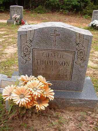 THOMPSON, CHARLIE - Columbia County, Arkansas | CHARLIE THOMPSON - Arkansas Gravestone Photos