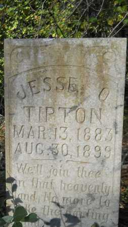 TIPTON, JESSE O - Columbia County, Arkansas | JESSE O TIPTON - Arkansas Gravestone Photos