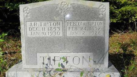 TIPTON, REBECCA ALABAMA - Columbia County, Arkansas | REBECCA ALABAMA TIPTON - Arkansas Gravestone Photos