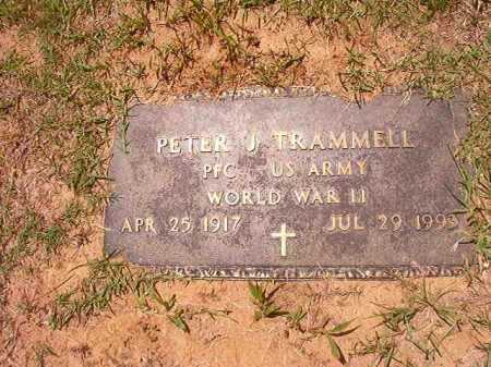 TRAMMELL (VETERAN WWII), PETER J - Columbia County, Arkansas | PETER J TRAMMELL (VETERAN WWII) - Arkansas Gravestone Photos