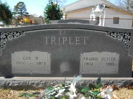 BUTLER TRIPLET, PRAIRIE JANE - Columbia County, Arkansas | PRAIRIE JANE BUTLER TRIPLET - Arkansas Gravestone Photos