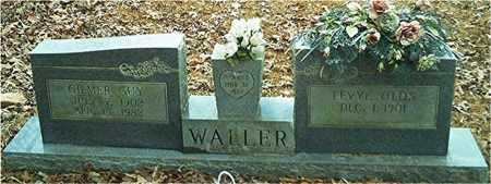 WALLER, LEVYE OLDS - Columbia County, Arkansas | LEVYE OLDS WALLER - Arkansas Gravestone Photos