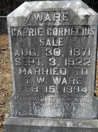 WARE, CARRIE CORNELIUS - Columbia County, Arkansas | CARRIE CORNELIUS WARE - Arkansas Gravestone Photos