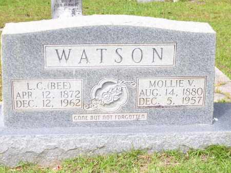 HILL WATSON, MOLLIE VERTINA - Columbia County, Arkansas | MOLLIE VERTINA HILL WATSON - Arkansas Gravestone Photos