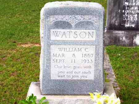 WATSON, WILLIAM C - Columbia County, Arkansas | WILLIAM C WATSON - Arkansas Gravestone Photos