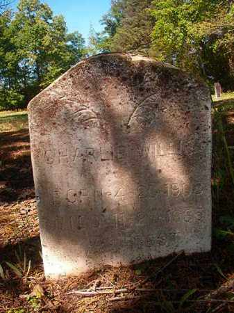 WILLIS, CHARLIE - Columbia County, Arkansas | CHARLIE WILLIS - Arkansas Gravestone Photos