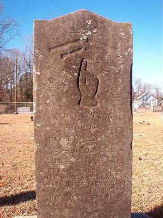 WILSON, B B - Columbia County, Arkansas | B B WILSON - Arkansas Gravestone Photos