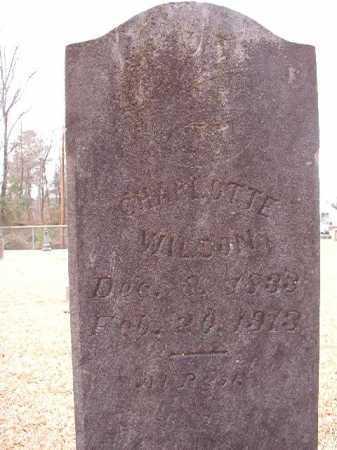 WILSON, CHARLOTTE - Columbia County, Arkansas | CHARLOTTE WILSON - Arkansas Gravestone Photos