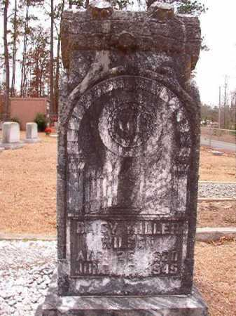 WILSON, DAISY - Columbia County, Arkansas | DAISY WILSON - Arkansas Gravestone Photos