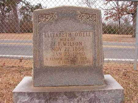 O'DELL WILSON, ELIZABETH - Columbia County, Arkansas | ELIZABETH O'DELL WILSON - Arkansas Gravestone Photos