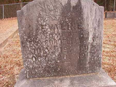 WILSON, EVALINE - Columbia County, Arkansas | EVALINE WILSON - Arkansas Gravestone Photos