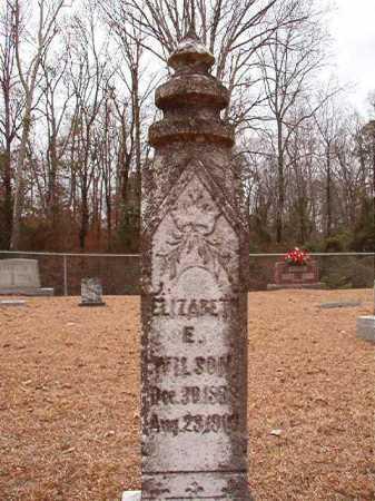 WILSON, ELIZABETH E - Columbia County, Arkansas | ELIZABETH E WILSON - Arkansas Gravestone Photos
